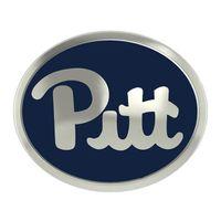 Pitt Enameled Bead in Color