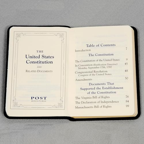 Mini Leather US Constitution Image-3