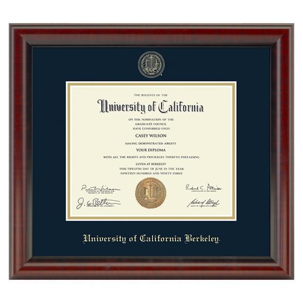 Berkeley Fidelitas Frame